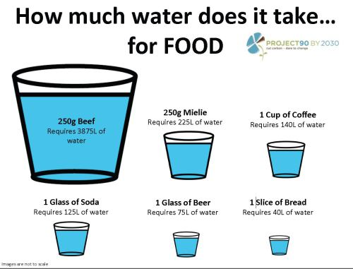 how-much-water-does-it-take-for-food